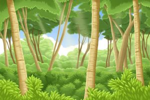 forest background finished 1