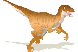 raptor-01