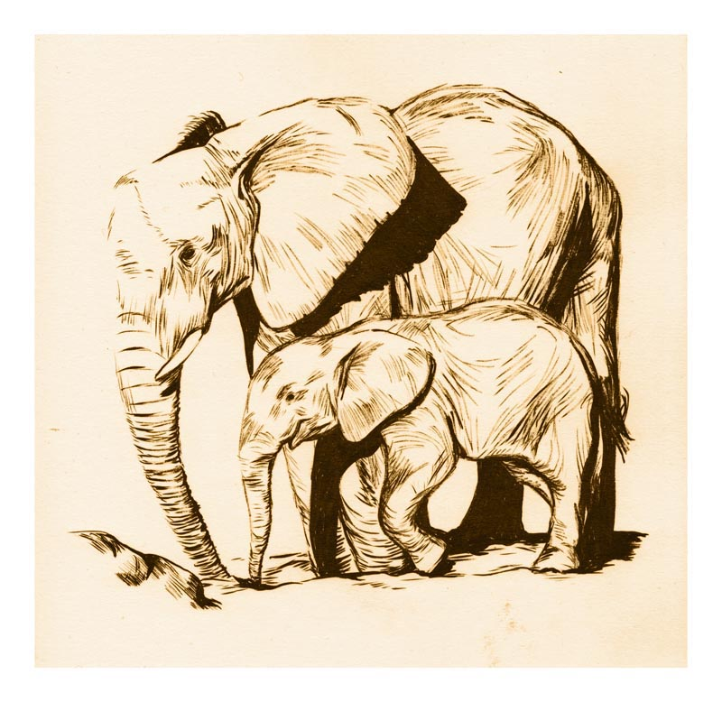 CHRIS SAUNDER - SAMPLE WORK 01 - ELEPHANTS