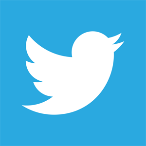 new-twitter-logo-vector
